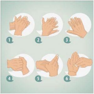 6 cuidados essenciais para evitar a transmissão do corona vírus na estrada: higienização das mãos