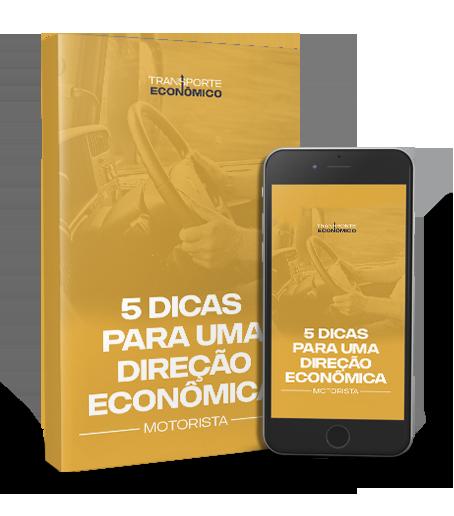 5 dicas para uma direção econômica