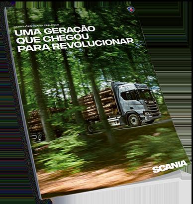 imagem folheto cana, madeira, construção, off-road